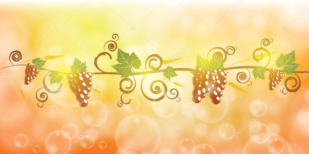 Ripe grape fruit and corn illustration