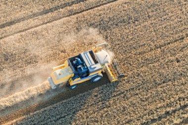 Combine on harvest field