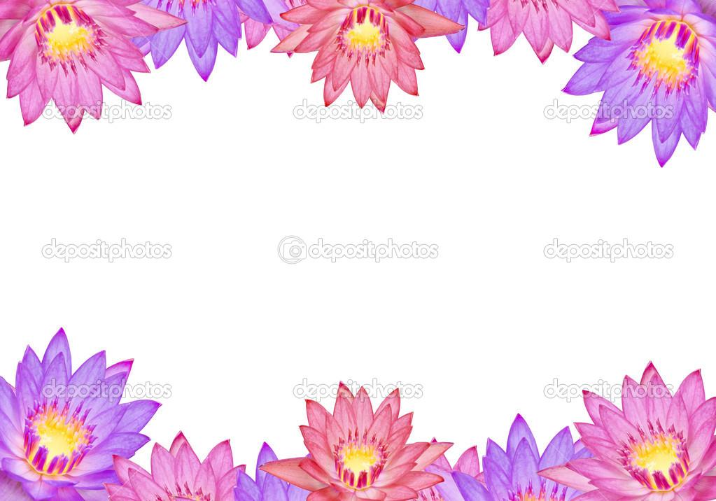 Colorful lotus flowers stock photo tomgigabite 33098903 colorful lotus flowers with text area photo by tomgigabite mightylinksfo