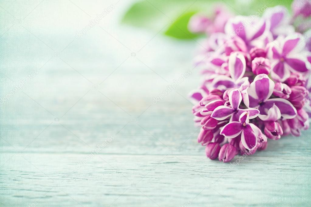 Purple lilacs on vintage blue wooden background