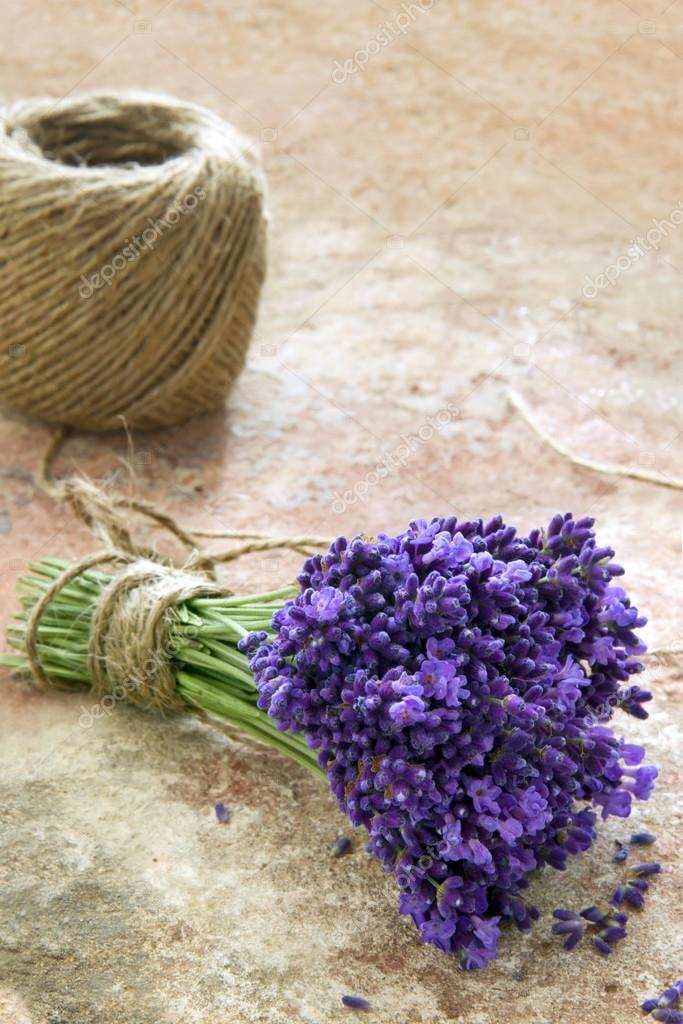 Lavender Flowers Tied With Rustic Twine Stock Photo C Anskuw 32153181