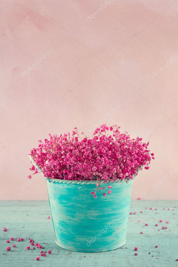 Baby's breath flowers in a blue vase