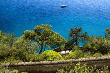 Beautiful sea in Capri - Italy