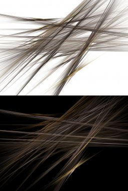 Abstract Hair Fiber Background over White and Black
