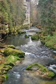 fiume kamenice