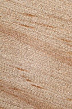 Wood grain texture. macro