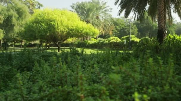 formální zahrady. Park