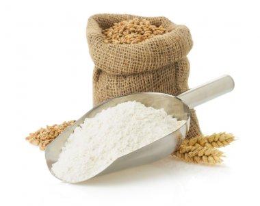 wheat flour and bread on white