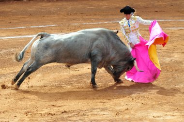 Bull-fight in Plaza de Toros Bull Ring Mexico City