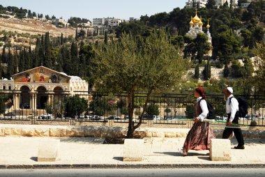 Mount of Olives in Jerusalem Israel