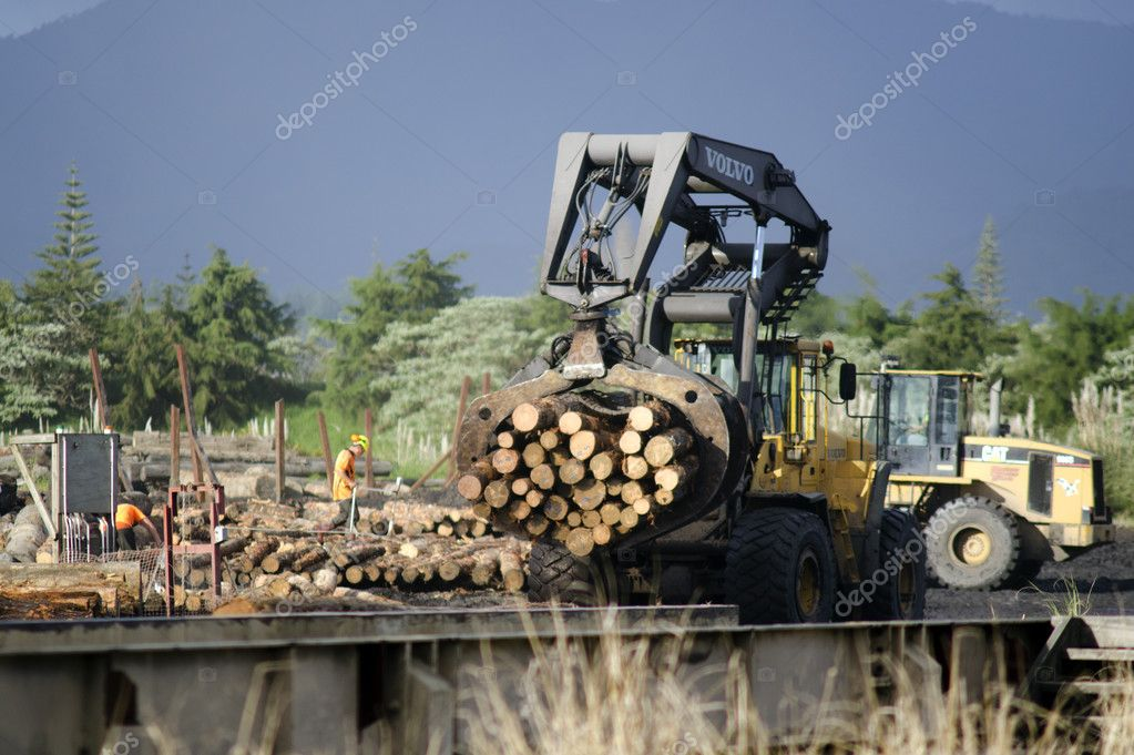 Wood Industry - NZ Wood