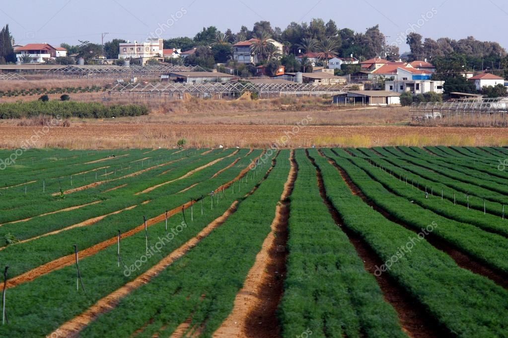 Moshav in Israel