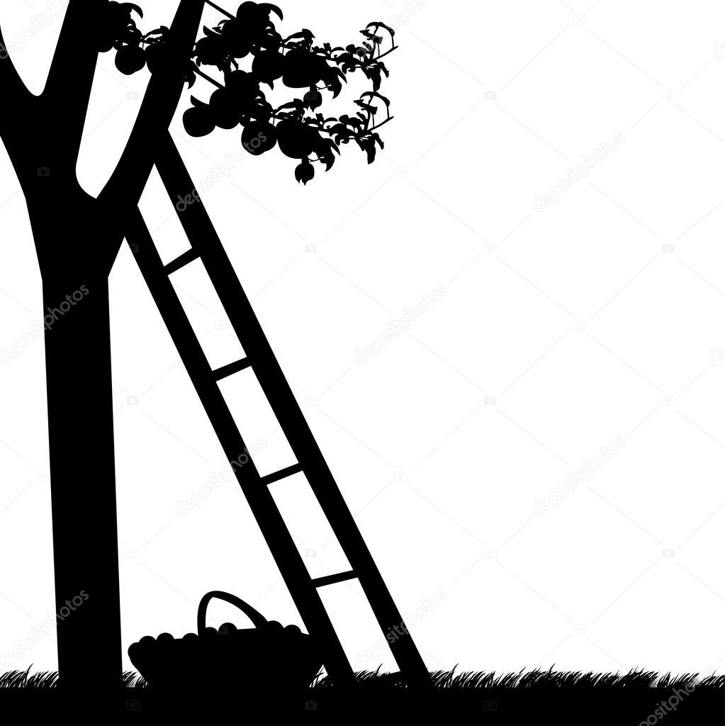 apple tree with ladder and basket of apples silhouette stock vector 12378366