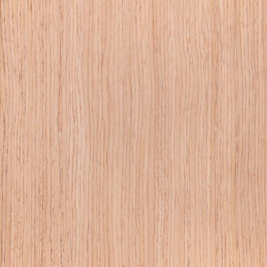 Texture of oak, tree background