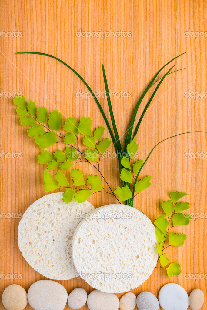 Spa concept of sponge with green branches fern and pebbles on wo