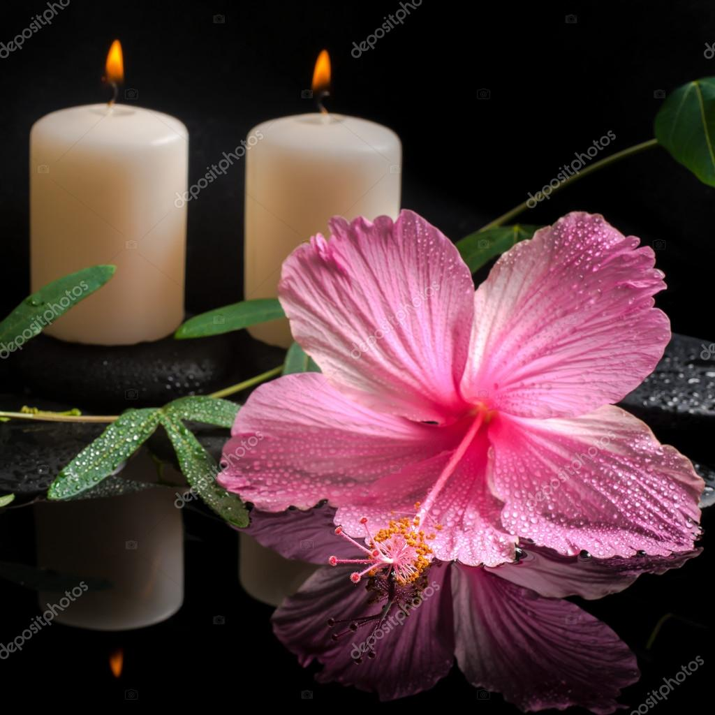Beautiful spa concept of hibiscus, tendril passionflower, candle