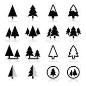 fenyő fa vektoros ikonok beállítása