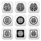 Photo Human brain icons set - intelligence, creativity concept
