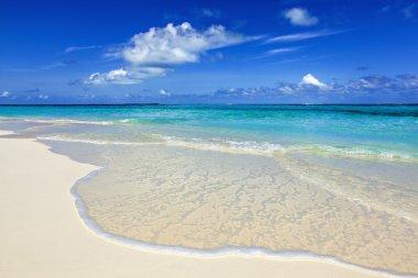 paradise beach on the island