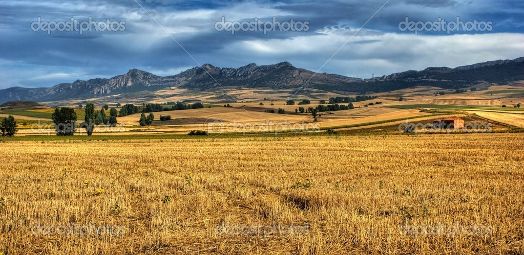 Terra Chat Castilla La Mancha