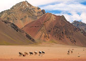 Mountain landscape in the Andes with hikers trekking, Argentina, South America