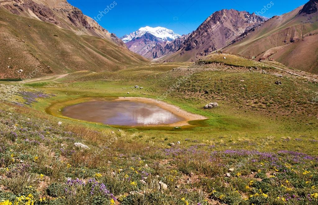 Beautiful nature landscape with Aconcagua in the background as seen in Aconcagua National Park, Argentina, South America