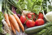 Fotografie Many fresh spring organic vegetables on planks gardening concept