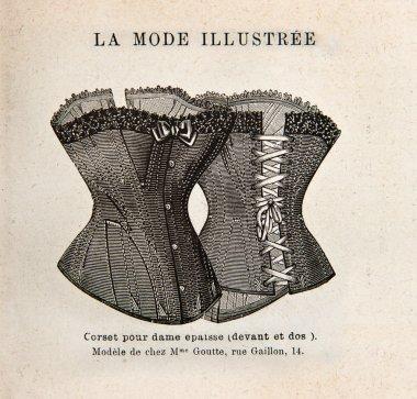Vintage corset. antique engraved illustration