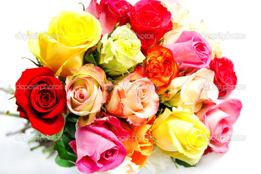 Букеты красивых роз на белом фоне, цветы опт белгород