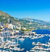 Arial view over Monaco harbour. mediterranean landscape