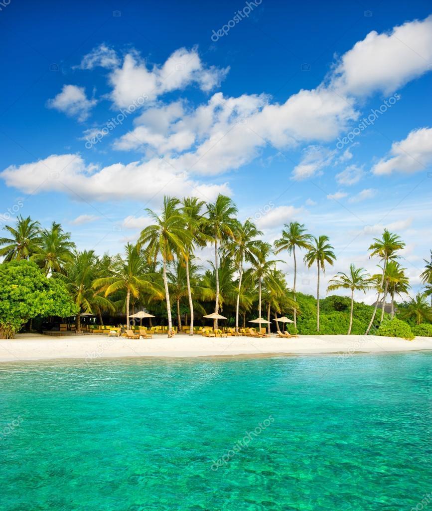 Tropical island palm beach with beautiful blue sky