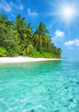 Tropical island beach with perfect sky