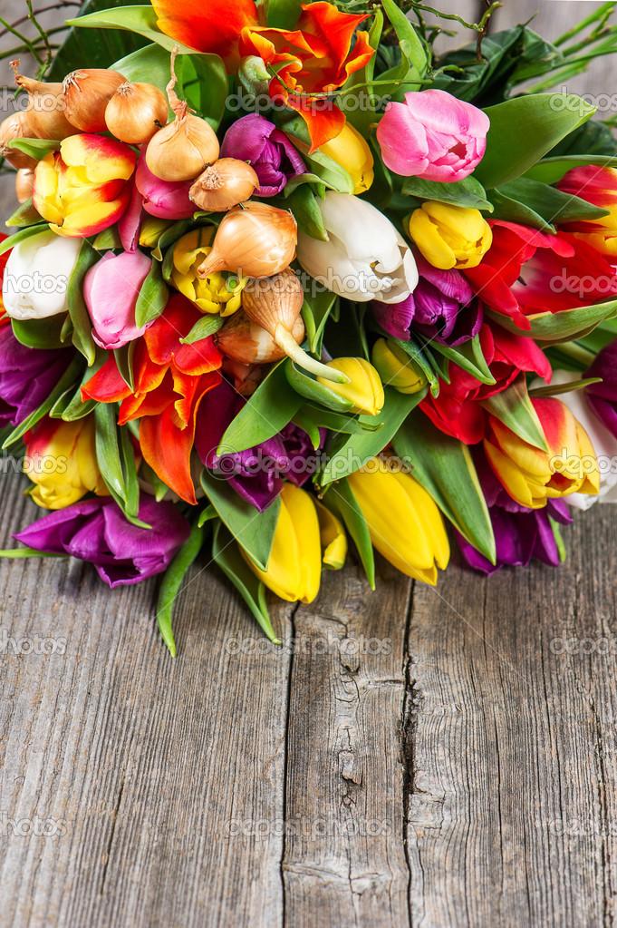 Assez bouquet de fleurs tulipes frais printanier coloré — Photo #36317671 QX77