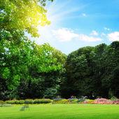 Fotografie Park und Erholung Liegewiese