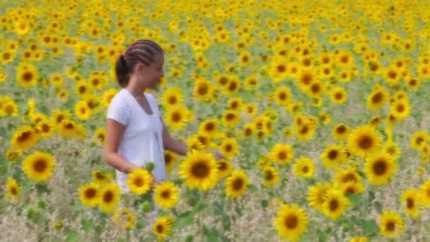 Slunečnice chůze