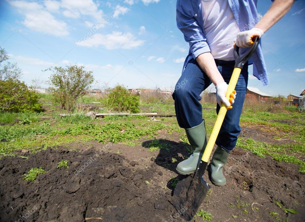Image of male farmer in rubber boots didgging in the garden