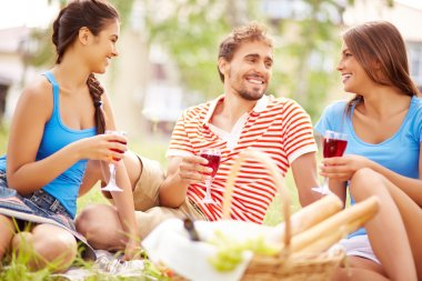 Friends drinking wine at picnic