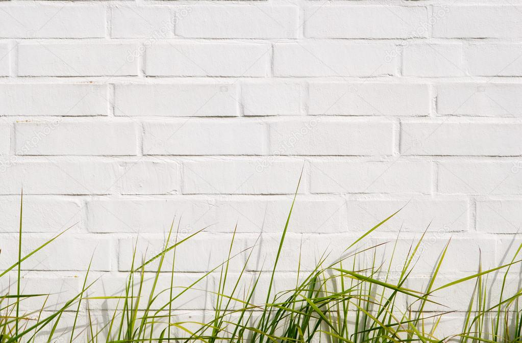 Green grass and brick wall