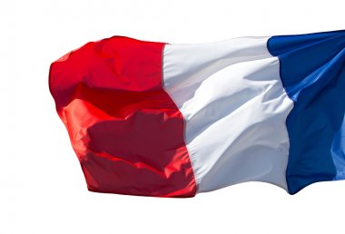 France flag in the wind on white background