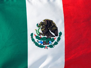 Mexican flag in sunlight close-up