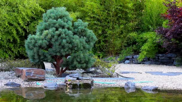 Small waterfall in the Zen Garden