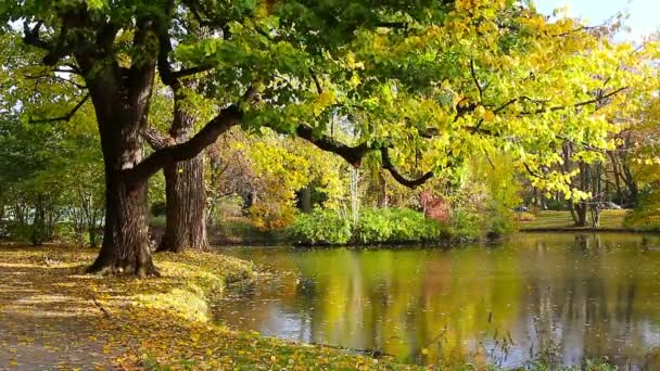 Autumn park in tcity Hanover in Germany