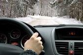 jízdy v zimě