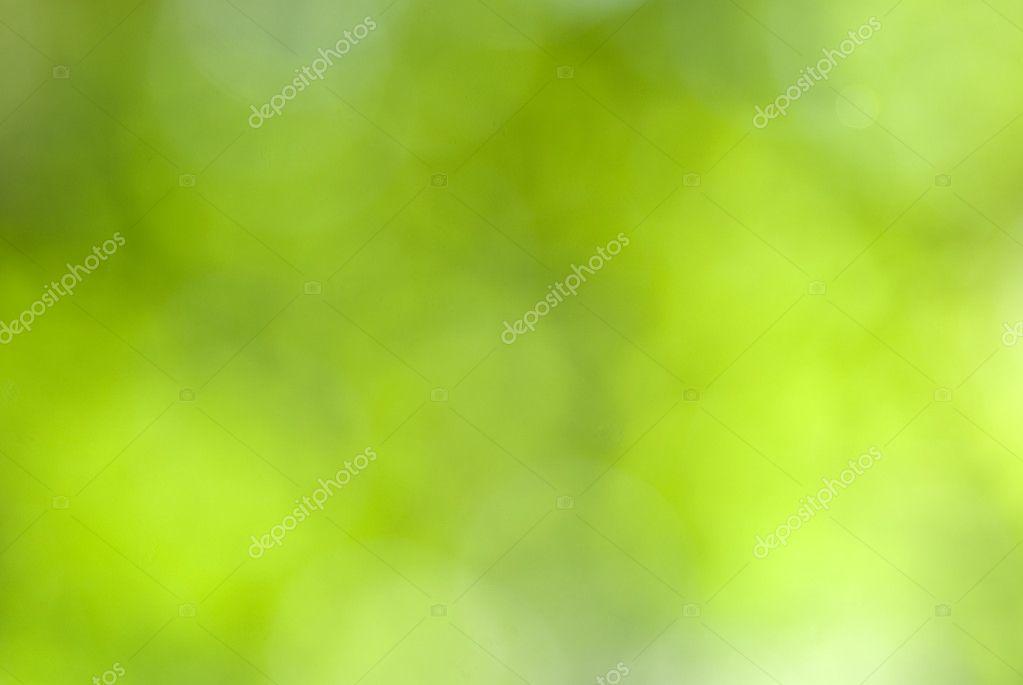 Green leaves bokeh