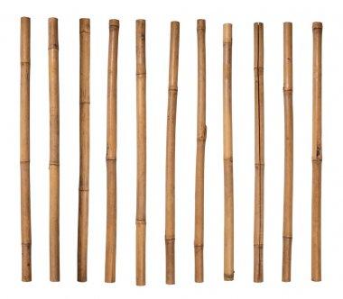 Bamboo sticks isolated on white