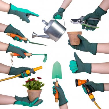 Hand in a glove holding gardening tools isolated on white