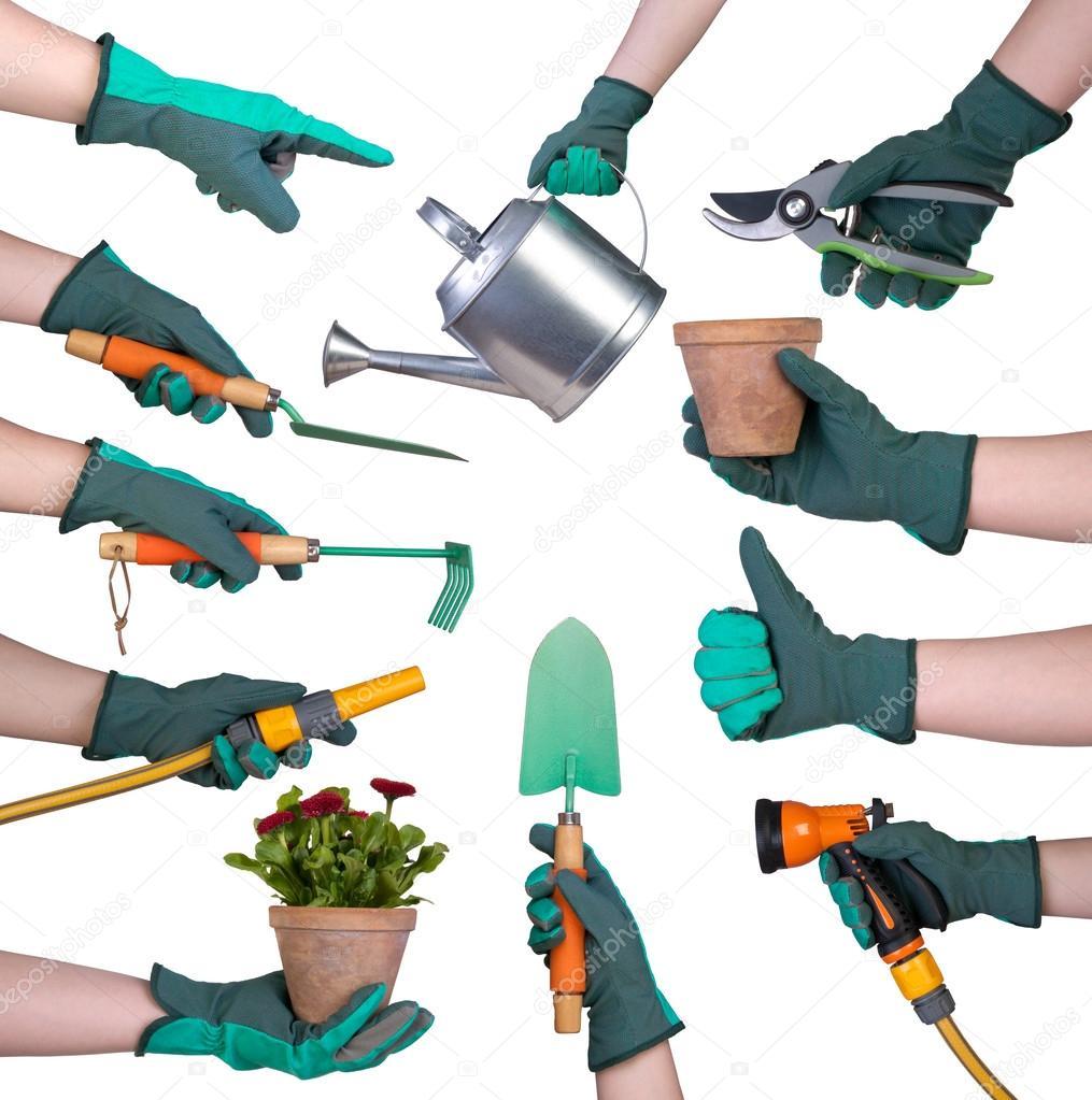 la mano en un guante con de jardinera aislados en blanco u fotos de stock