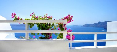 Santorini terrace with flowers