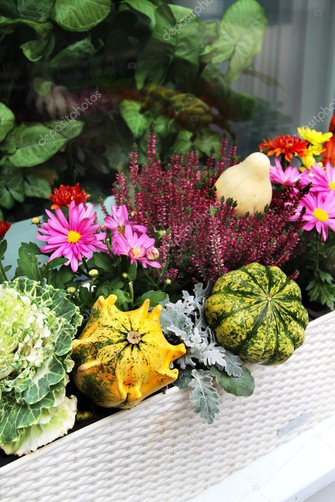 décorations de terrasse avec beaucoup de fleurs et autres légumes de ...
