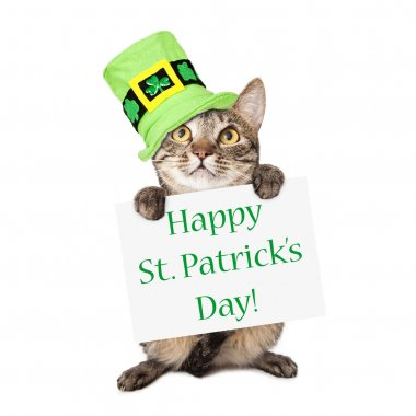 Cat Carrying St Patricks Day Sign